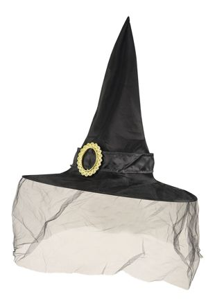 Adult Witch Black Hat With Veil